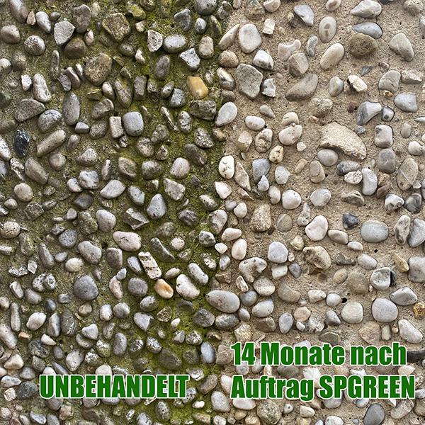 vergleich_Grunbelag_entferner_Test_SPGREEN_StoneprotecT_nach_14_Monaten_600px